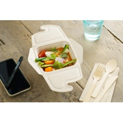 Boite alimentaire meal box biodégradable 500 ml par 50